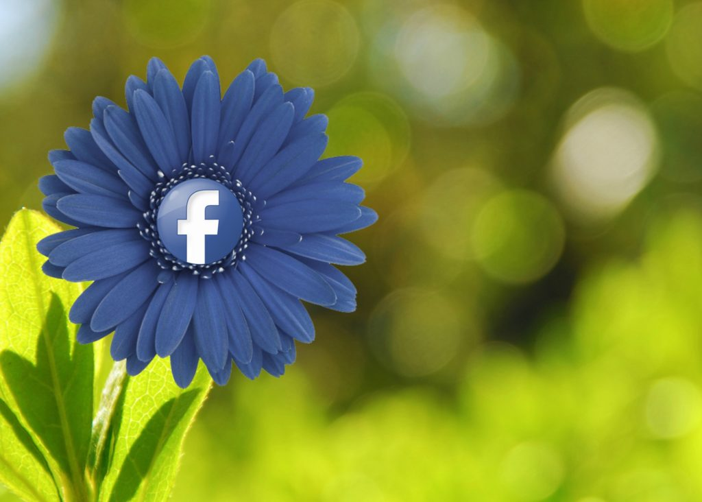 facebookflower