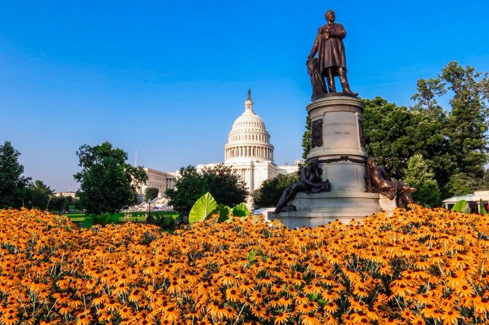 A view of the US Capitol from Garfield Circle by Matthew Straubmuller, licence: CC BY 2.0