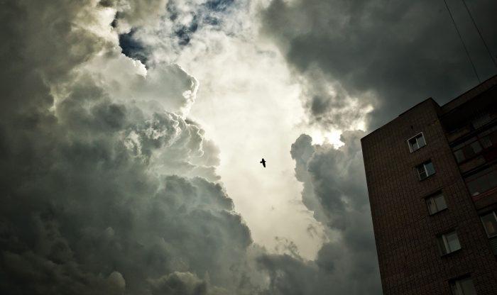 Picture: Untitled by Vladimir Chuchadeev, license CC0 1.0