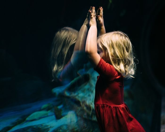 Picture: Kid, child, childhood and blonde by Bekah Russom, license CC0 1.0