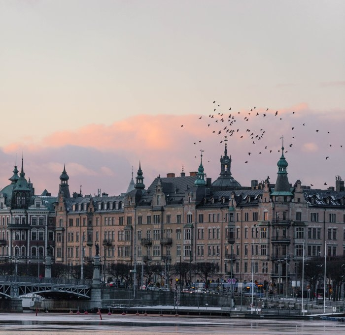 Picture: Birds over Stockholm by Marten Bjork, license CC0 1.0, cropped